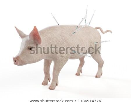 Stok fotoğraf: Enjeksiyon · domuz · yalıtılmış · 3D · görüntü · hastane