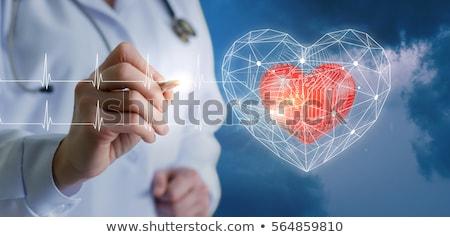szív · orvosi · ötlet · vektor · szeretet · orvos - stock fotó © jagoda