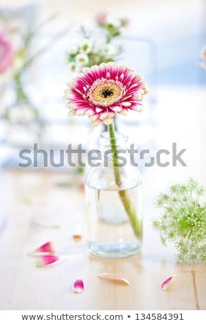 renkli · çiçekler · şişeler · küçük · kırmızı · mavi - stok fotoğraf © barbaraneveu
