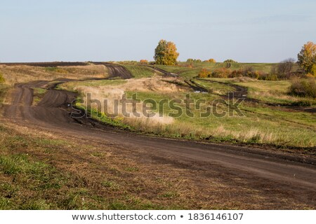 old road roadsides and green grass field sky with clouds in background stock photo © cherezoff