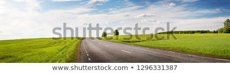 Veld weg hemel wolken voorjaar gras Stockfoto © yelenayemchuk