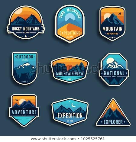 Montagna badge colorato semplice alberi Foto d'archivio © mikemcd