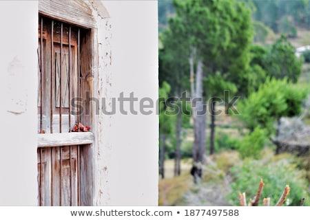 vernietigd · kamer · interieur · ruimte · stad · muur - stockfoto © pedrosala