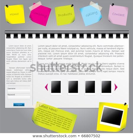 wyszukiwania · zielone · karteczki · wektora · ikona · projektu - zdjęcia stock © rizwanali3d