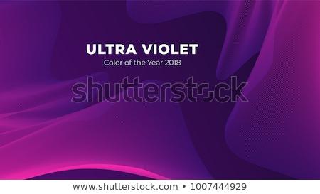 紫色 · 抽象的な · 曲線 · 波状の · 背景 · 絵画 - ストックフォト © kheat