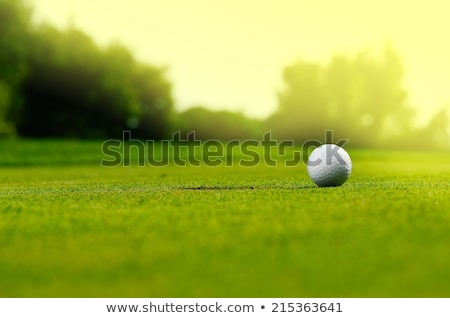 Stock photo: Golf ball in a green course and hole