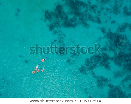 A shipwreck on the beach in the Caribbean Stock photo © user_9870494