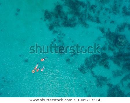 Hajóroncs tengerpart Karib tenger nyár sziget Stock fotó © user_9870494