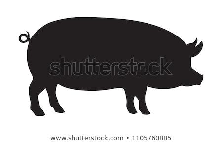 豚 シルエット ベクトル 画像 尾 ポーズ ストックベクター