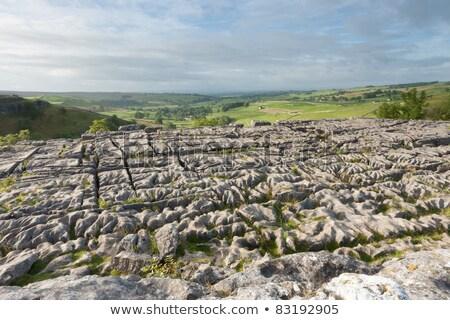 çağlayan çim ahşap doğa manzara güzellik Stok fotoğraf © Avlntn