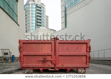 большой мусор вектора дизайна иллюстрация изолированный Сток-фото © RAStudio
