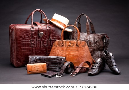 marrom · elegante · crocodilo · couro · bolsa · isolado - foto stock © zurijeta