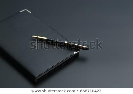 кожа дневнике пер современный темно синий Сток-фото © zhekos