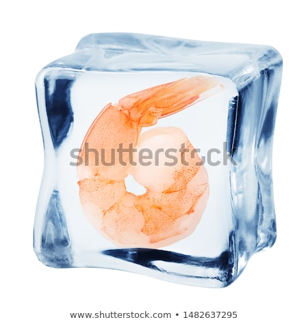 Garnalen Ice Cube voedsel citroen koken kubus Stockfoto © M-studio