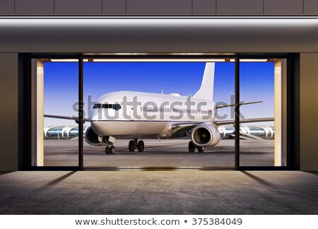 plane expects tourists at airport  Stock photo © ssuaphoto