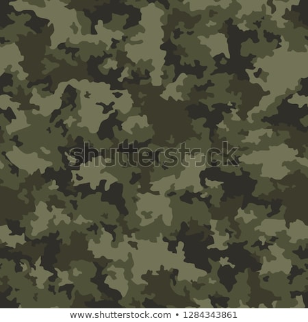 vector   isolated on background   soldier stock photo © pavelmidi