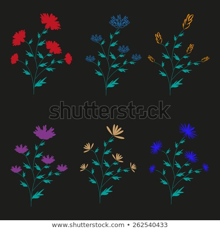 Six colorful flowers Stock photo © bluering