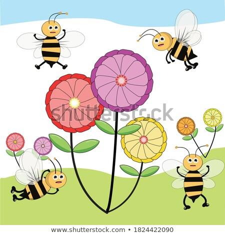 Livro insetos voador jardim cena ilustração Foto stock © bluering