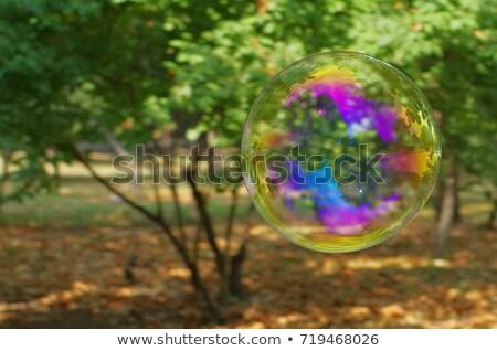 Bańki mydlane powietrza dwa duży pęcherzyki Zdjęcia stock © brianguest