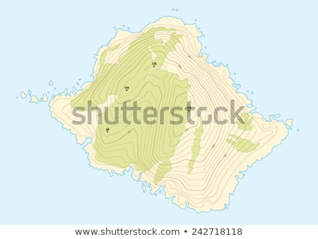 Island Topographic Map Stock photo © idesign
