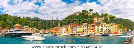 Genoa - panoramic view of the city Stock photo © benkrut