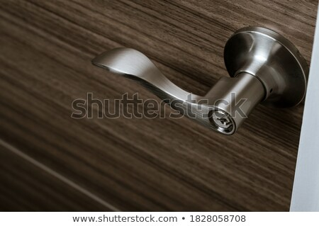 鋼 · ドア · テクスチャ · 金属 · レバー · 古い - ストックフォト © mmarcol