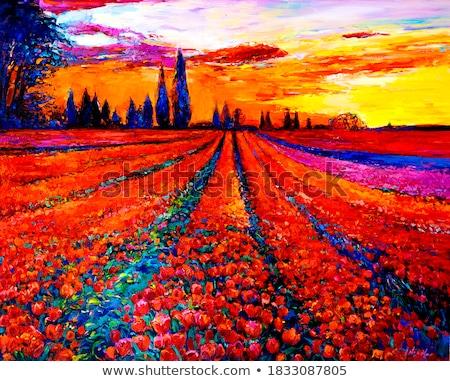 painted tulipfield stock photo © zela