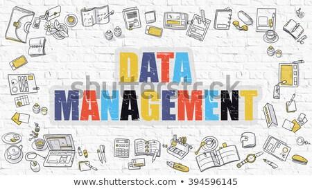Multicolor Data Management on White Brickwall. Doodle Style. Stock photo © tashatuvango