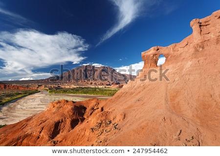 Désert route nord Argentine perdu nature Photo stock © daboost