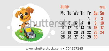 2018 year of yellow dog on Chinese calendar. Fun dog lawn mower. Calendar grid month June Stock photo © orensila