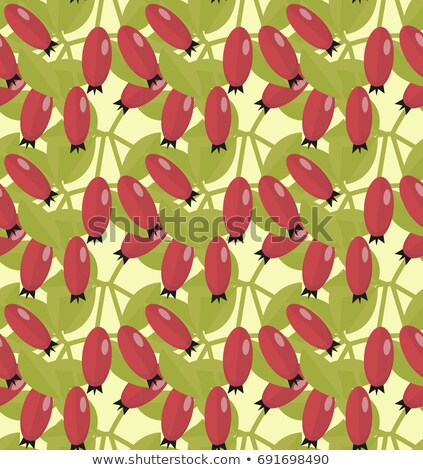 Rosehip seamless pattern. Hawthorn endless background. Red autumn berries repeating texture. Vector  Stock photo © lucia_fox