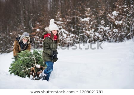 Children pulling Christmas tree in snow Stock photo © IS2