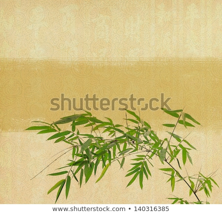 Stock photo: bamboo on old grunge antique paper texture