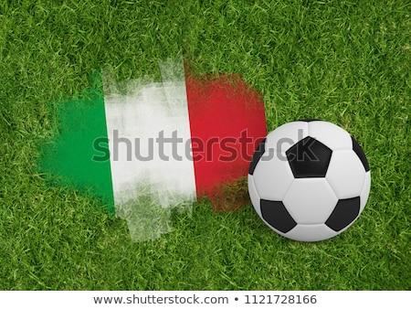 fútbol · fútbol · frescos · verde · deporte · naturaleza - foto stock © wavebreak_media
