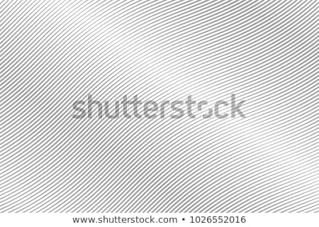Przekątna falisty linie wzór Zdjęcia stock © SArts