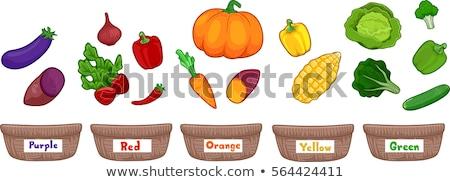 Vegetables Basket Sort By Color Stock photo © lenm