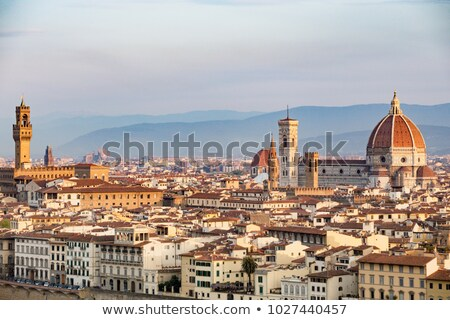 aerial view on florence stock photo © givaga