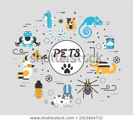 Pets flat illustration circle concept. Wildlife and home zoo animals vector design icons. Stock photo © Linetale