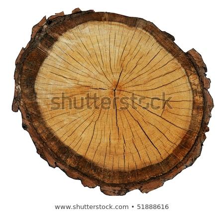 старые · выветрившийся · древесины · кольца · текстуры · крест - Сток-фото © taviphoto
