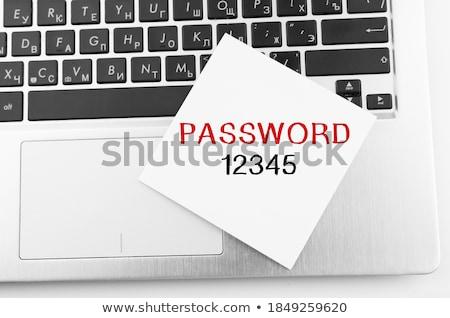 Online Kennwort Management stellt fest Stift Silber Stock foto © vinnstock