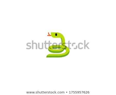 engraçado · serpente · desenho · animado · feliz · diversão · boca - foto stock © robuart