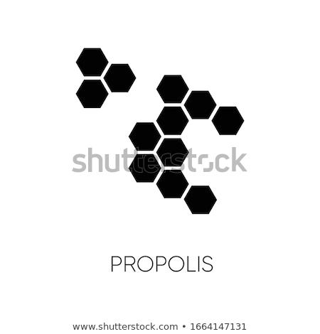 Zeshoek icon zwarte symbool element ontwerp Stockfoto © blaskorizov
