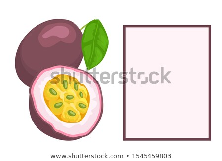 Feuille exotique juteuse fruits affiche vecteur Photo stock © robuart