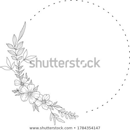Logo çiçek yaprakları vektör dizayn iş Stok fotoğraf © blaskorizov