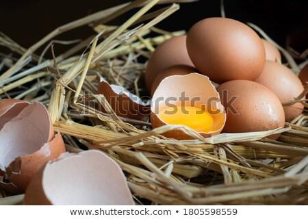 Farm fresh products and farmer Stock photo © colematt