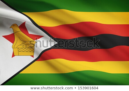House with flag of zimbabwe Stock photo © MikhailMishchenko