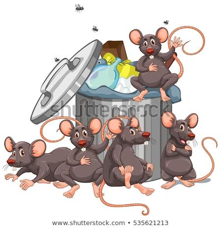 Five rats sitting by the rubbish bin Stock photo © colematt