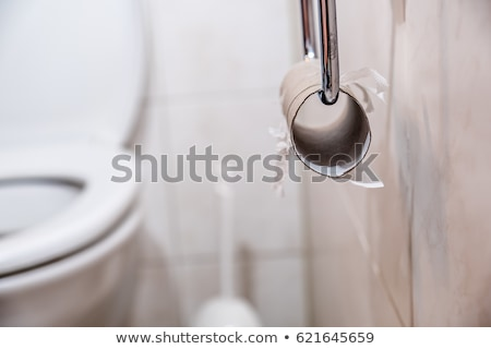Close-up Of Empty Toilet Paper Roll Stock photo © AndreyPopov