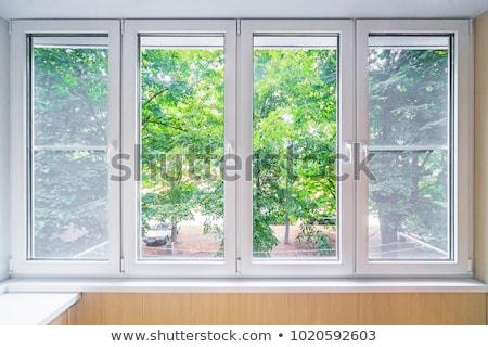 Grigio pvc finestra rosolare muro illustrazione 3d Foto d'archivio © magraphics