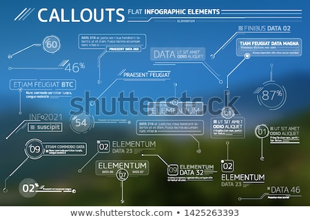 Callouts Flat Infographic Elements Collection Stock photo © ConceptCafe